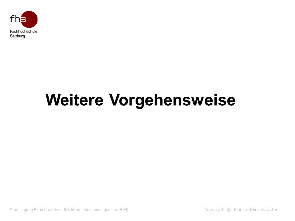 Copyright © Manfred Brandstätter Studiengang Betriebswirtschaft & Informationsmanagement (BWI) Weitere Vorgehensweise