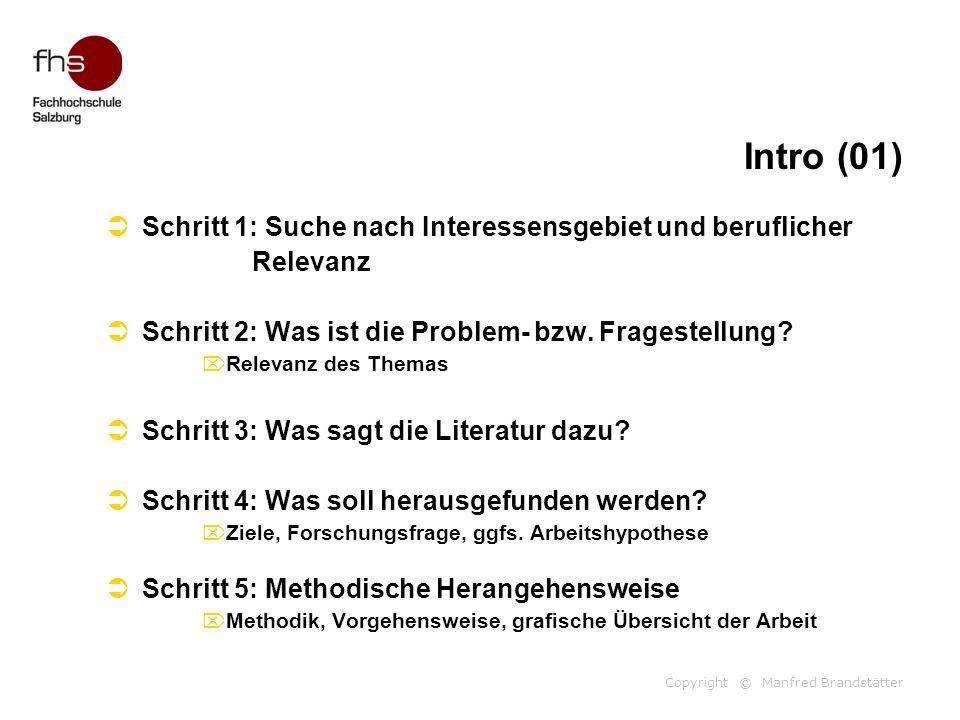 Copyright © Manfred Brandstätter Intro (01)  Schritt 1: Suche nach Interessensgebiet und beruflicher Relevanz  Schritt 2: Was ist die Problem- bzw.