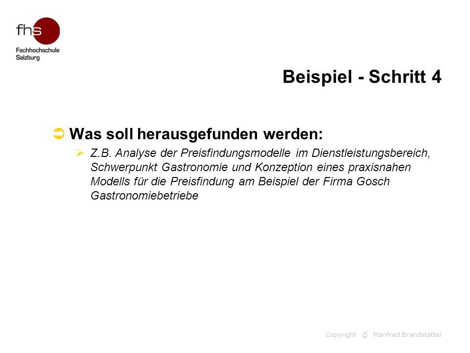 Copyright © Manfred Brandstätter Beispiel - Schritt 4  Was soll herausgefunden werden:  Z.B. Analyse der Preisfindungsmodelle im Dienstleistungsbere
