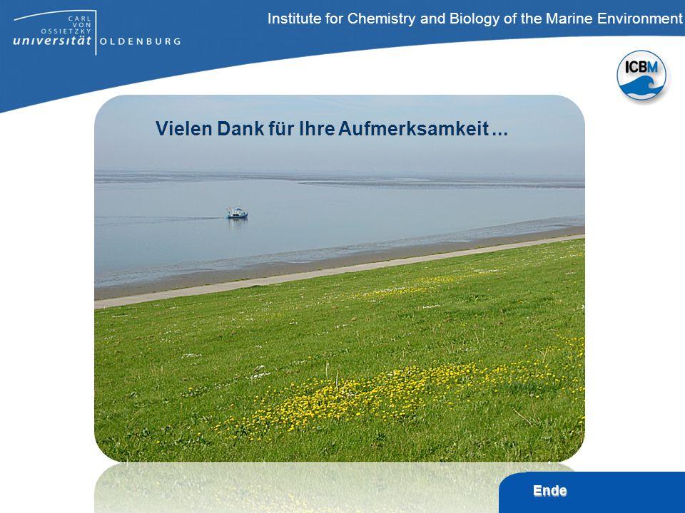ICBM – T ERRAMARE, Wilhelmshaven Institute for Chemistry and Biology of the Marine Environment Ende Vielen Dank für Ihre Aufmerksamkeit...