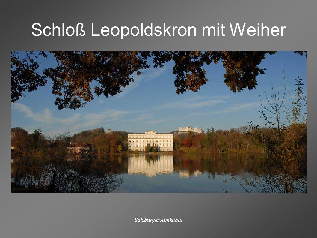 Salzburger Almkanal Schloß Leopoldskron mit Weiher