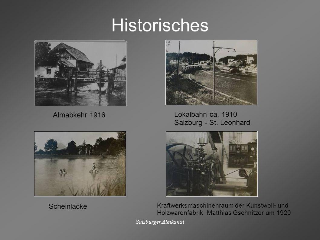 Salzburger Almkanal Historisches Almabkehr 1916 Lokalbahn ca. 1910 Salzburg - St. Leonhard Scheinlacke Kraftwerksmaschinenraum der Kunstwoll- und Holz