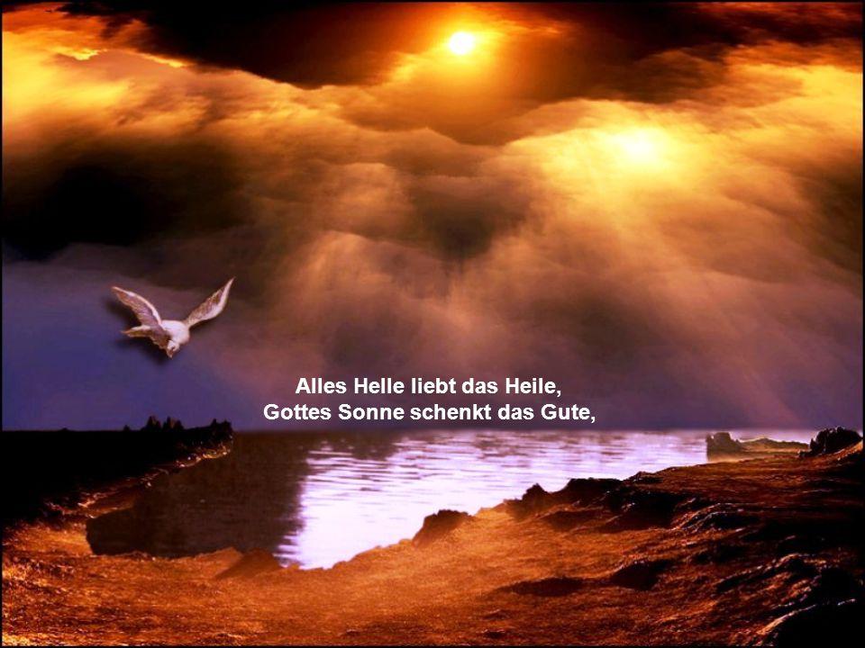 fühlt in Himmelsstrahlen-Wellen, gleichsam Gottes Liebes-Wonne.