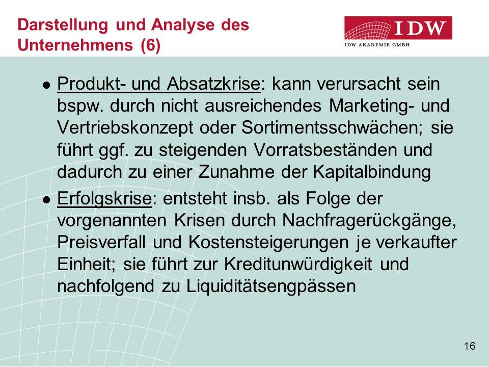 16 Darstellung und Analyse des Unternehmens (6) Produkt- und Absatzkrise: kann verursacht sein bspw.