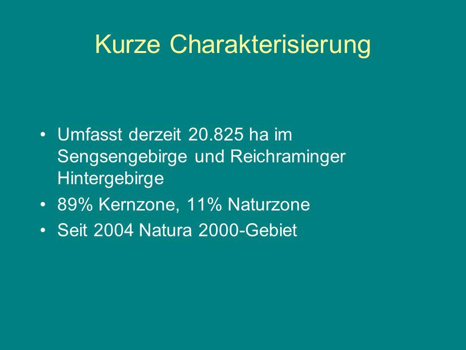 Kurze Charakterisierung Umfasst derzeit 20.825 ha im Sengsengebirge und Reichraminger Hintergebirge 89% Kernzone, 11% Naturzone Seit 2004 Natura 2000-