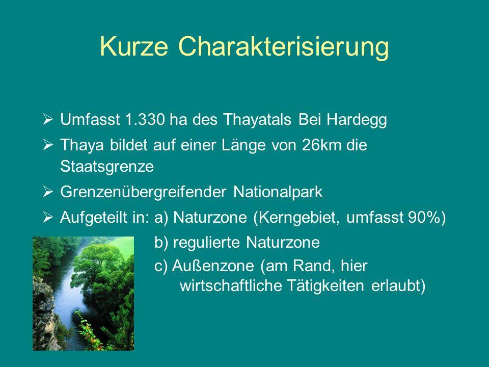 Kurze Charakterisierung  Umfasst 1.330 ha des Thayatals Bei Hardegg  Thaya bildet auf einer Länge von 26km die Staatsgrenze  Grenzenübergreifender Nationalpark  Aufgeteilt in: a) Naturzone (Kerngebiet, umfasst 90%) b) regulierte Naturzone c) Außenzone (am Rand, hier wirtschaftliche Tätigkeiten erlaubt)