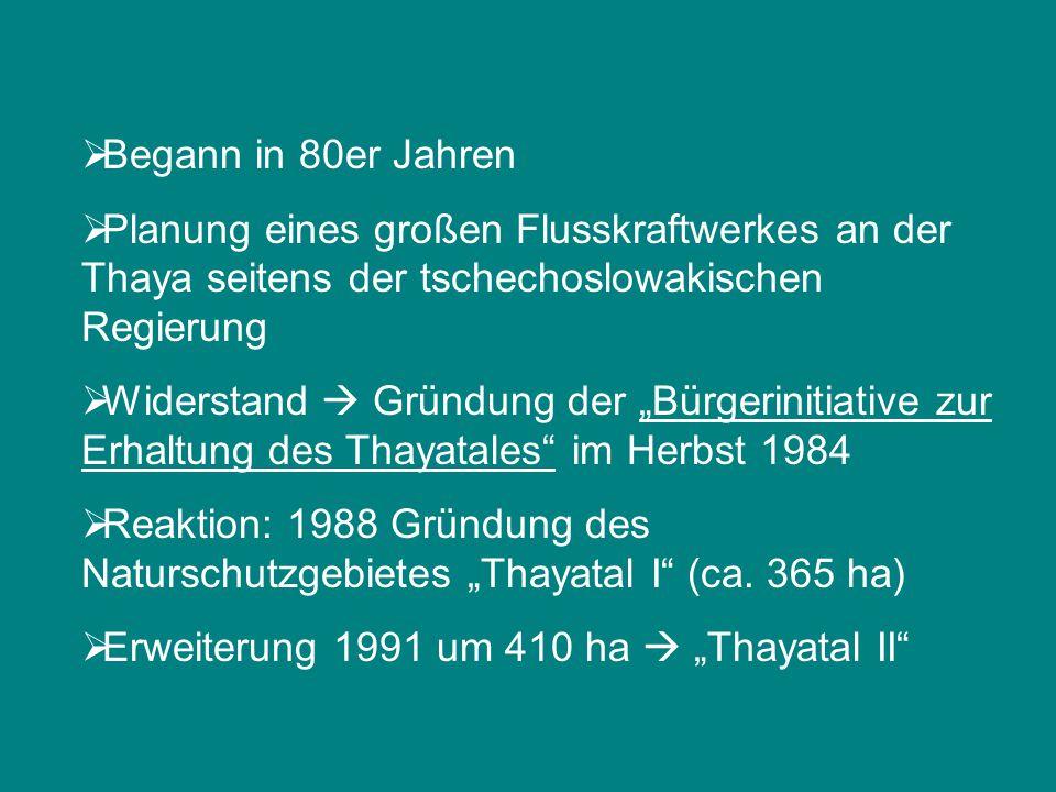 """ Begann in 80er Jahren  Planung eines großen Flusskraftwerkes an der Thaya seitens der tschechoslowakischen Regierung  Widerstand  Gründung der """"B"""