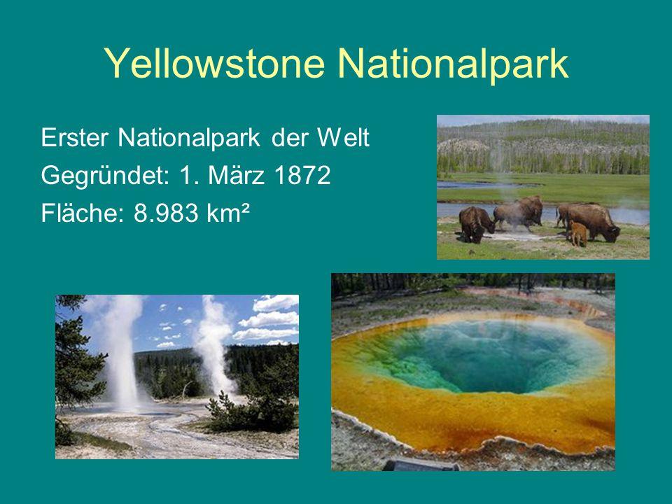 Nationalparke weltweit Yellowstone Nationalpark (USA) Kanada, Australien, Neuseeland Europa: 1909 Schweden 1914 Schweiz 120 Länder – mehr als 2.200 Nationalparks