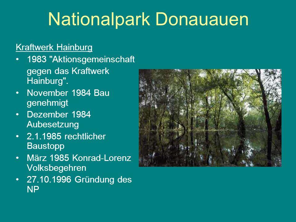 Nationalpark Donauauen Kraftwerk Hainburg 1983