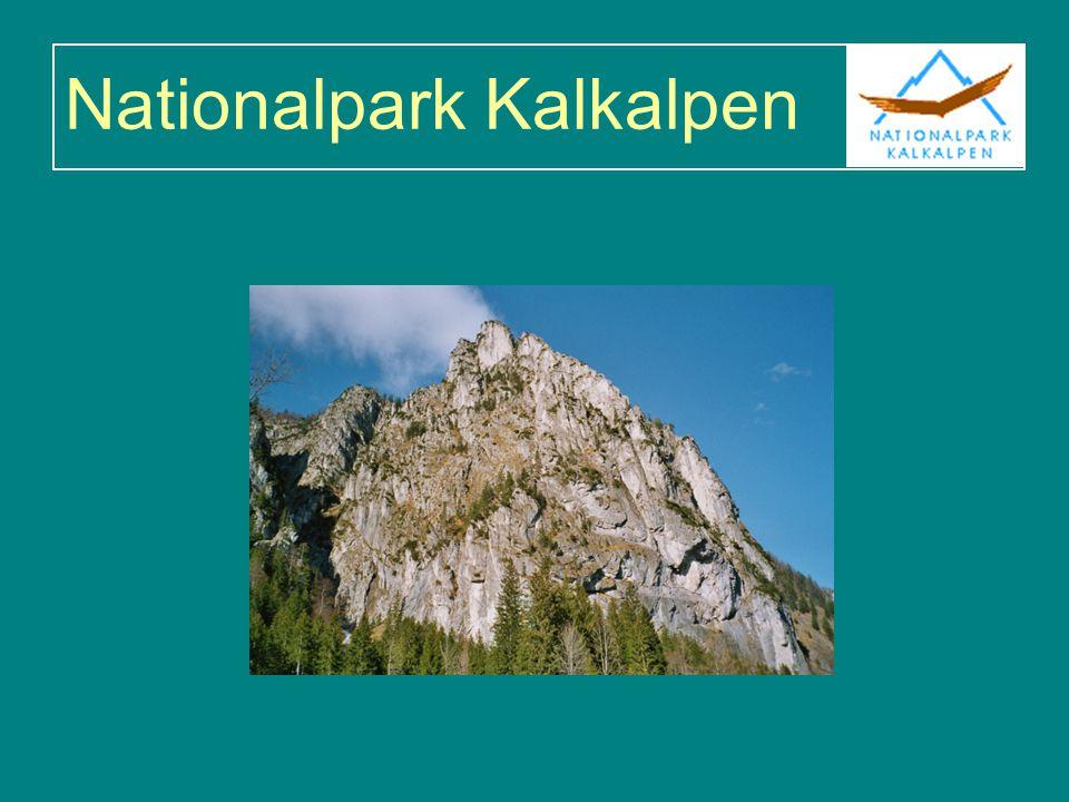 Kurze Charakterisierung Umfasst derzeit 20.825 ha im Sengsengebirge und Reichraminger Hintergebirge 89% Kernzone, 11% Naturzone Seit 2004 Natura 2000-Gebiet