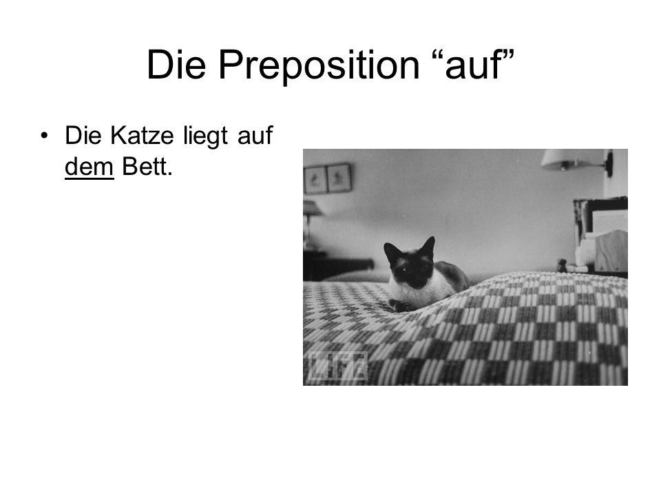 Die Preposition auf Die Katze liegt auf dem Bett.