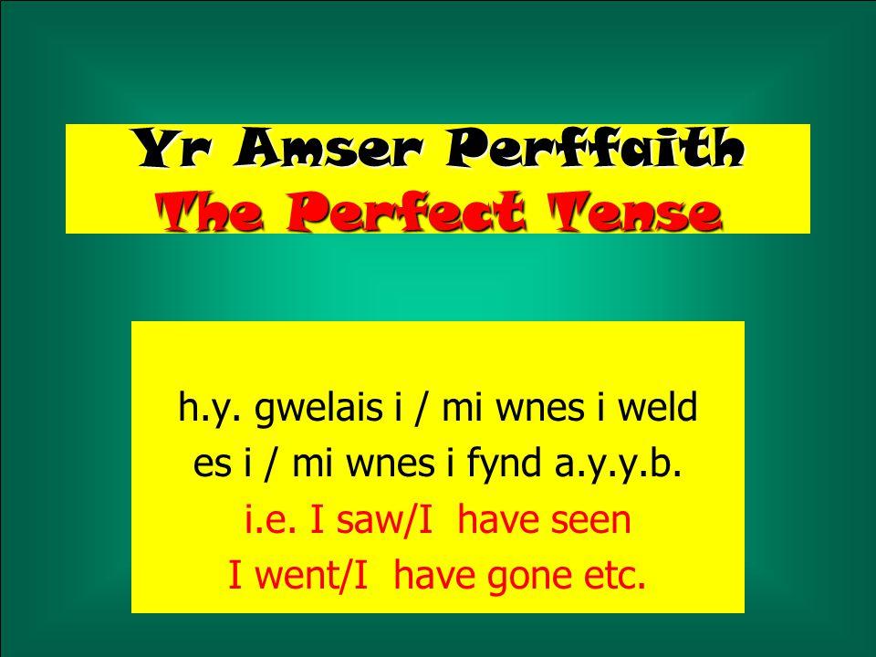 Er mwyn cyfieithu 'mi wnes i', 'mi wnest ti' a y.y.b.