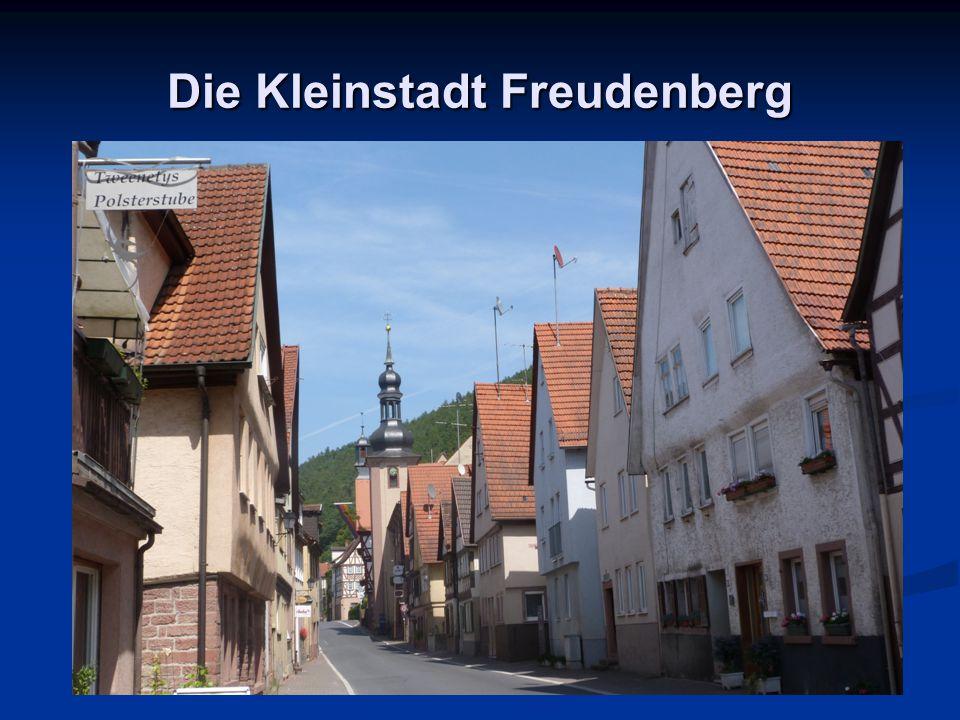 Die Kleinstadt Freudenberg