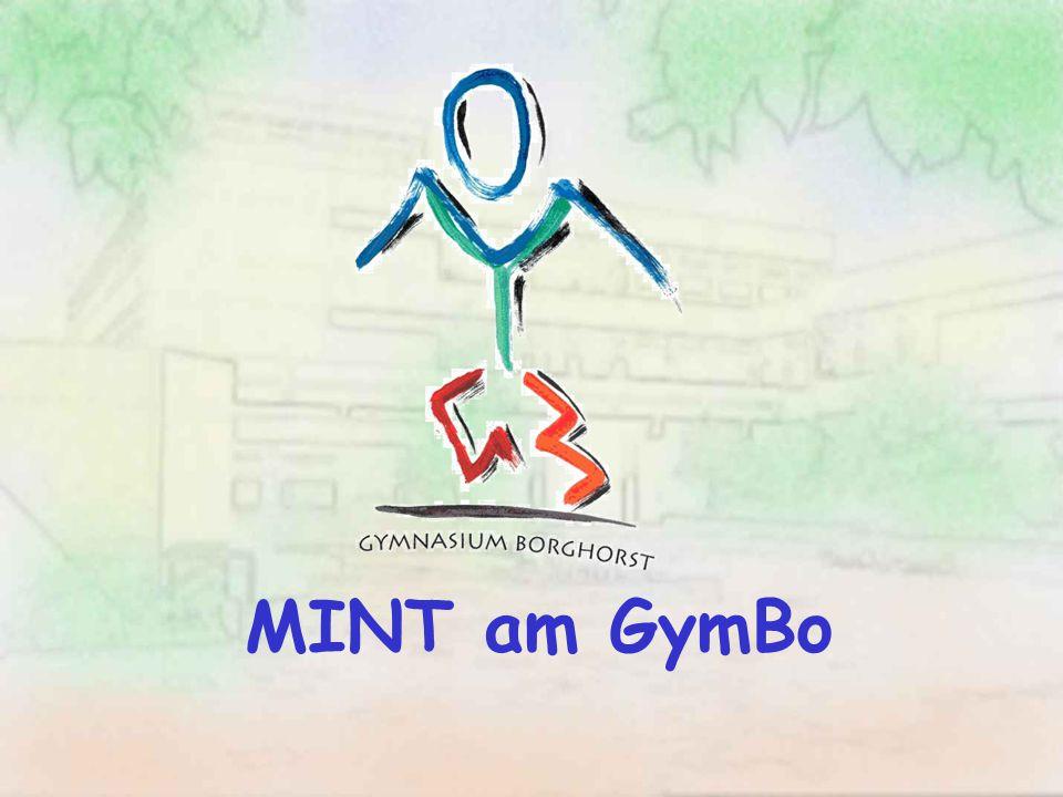 MINT am GymBo