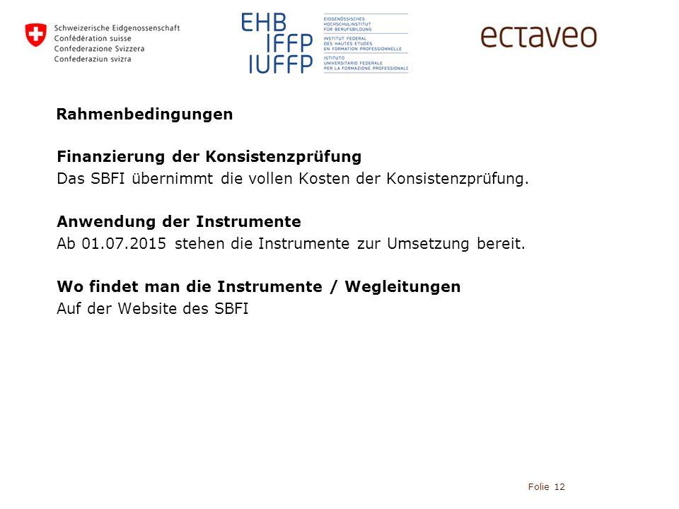 Rahmenbedingungen Finanzierung der Konsistenzprüfung Das SBFI übernimmt die vollen Kosten der Konsistenzprüfung.