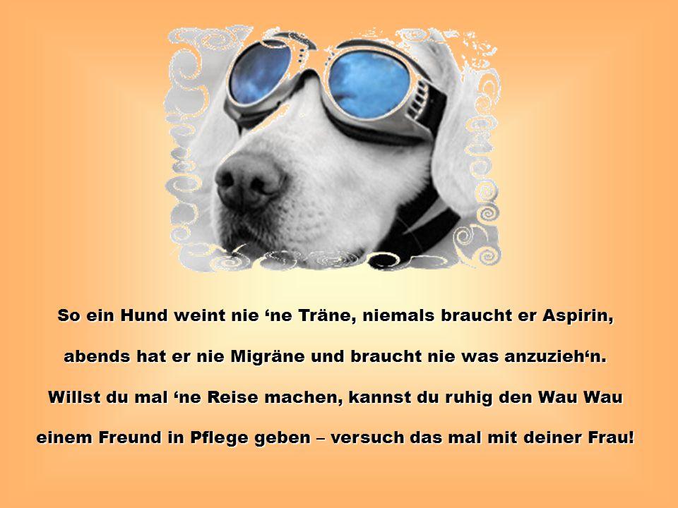 So ein Hund weint nie 'ne Träne, niemals braucht er Aspirin, abends hat er nie Migräne und braucht nie was anzuzieh'n. Willst du mal 'ne Reise machen,