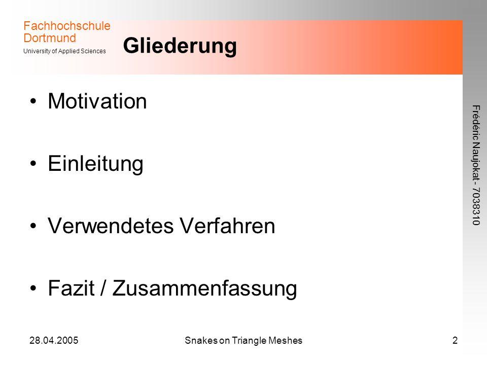 Fachhochschule Dortmund University of Applied Sciences Frédéric Naujokat - 7038310 28.04.2005Snakes on Triangle Meshes2 Gliederung Motivation Einleitung Verwendetes Verfahren Fazit / Zusammenfassung
