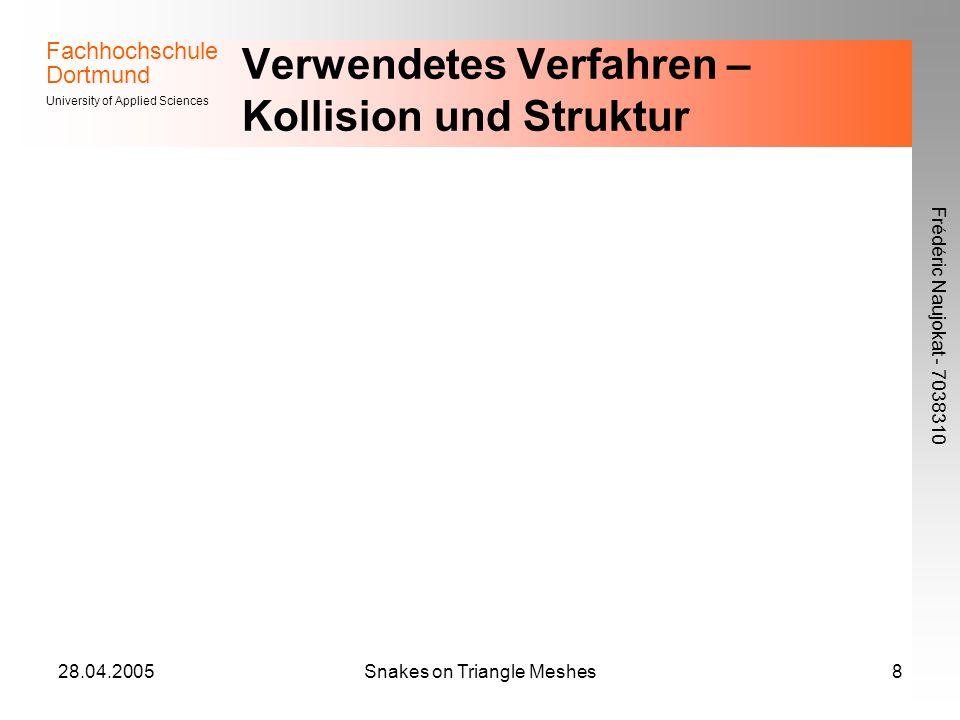 Fachhochschule Dortmund University of Applied Sciences Frédéric Naujokat - 7038310 28.04.2005Snakes on Triangle Meshes8 Verwendetes Verfahren – Kollision und Struktur
