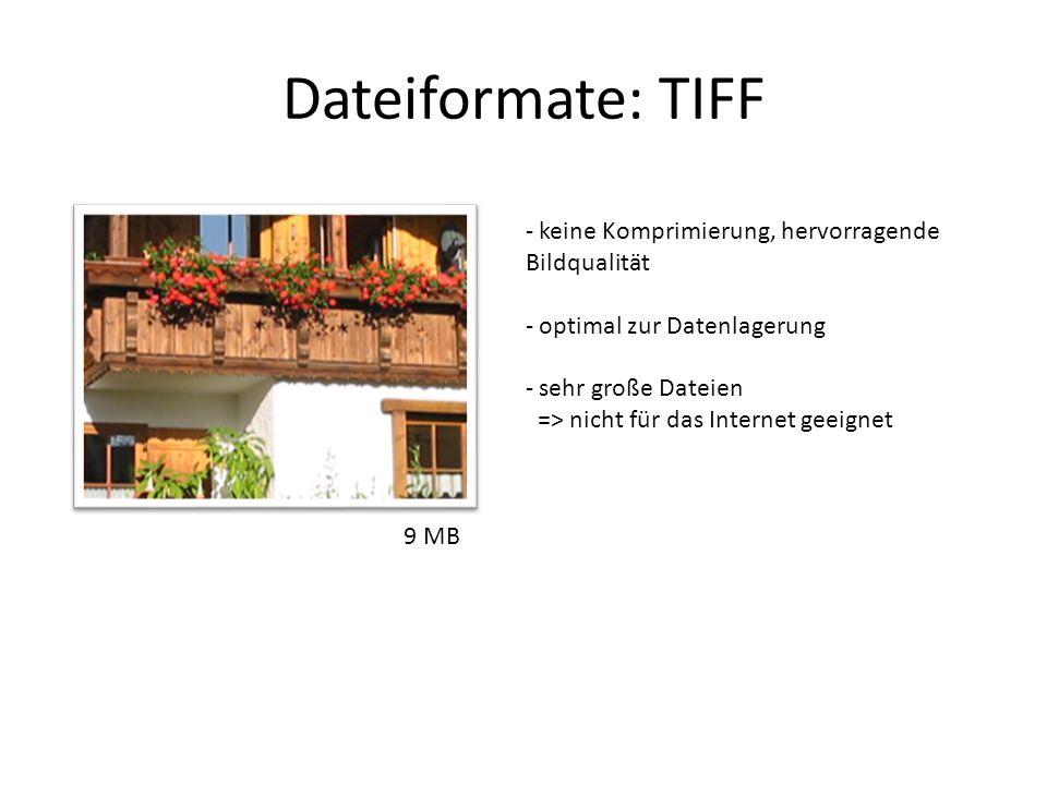 Dateiformate: TIFF - keine Komprimierung, hervorragende Bildqualität - optimal zur Datenlagerung - sehr große Dateien => nicht für das Internet geeign