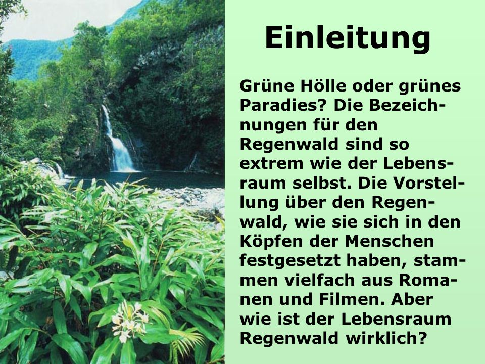 Einleitung Grüne Hölle oder grünes Paradies? Die Bezeich- nungen für den Regenwald sind so extrem wie der Lebens- raum selbst. Die Vorstel- lung über