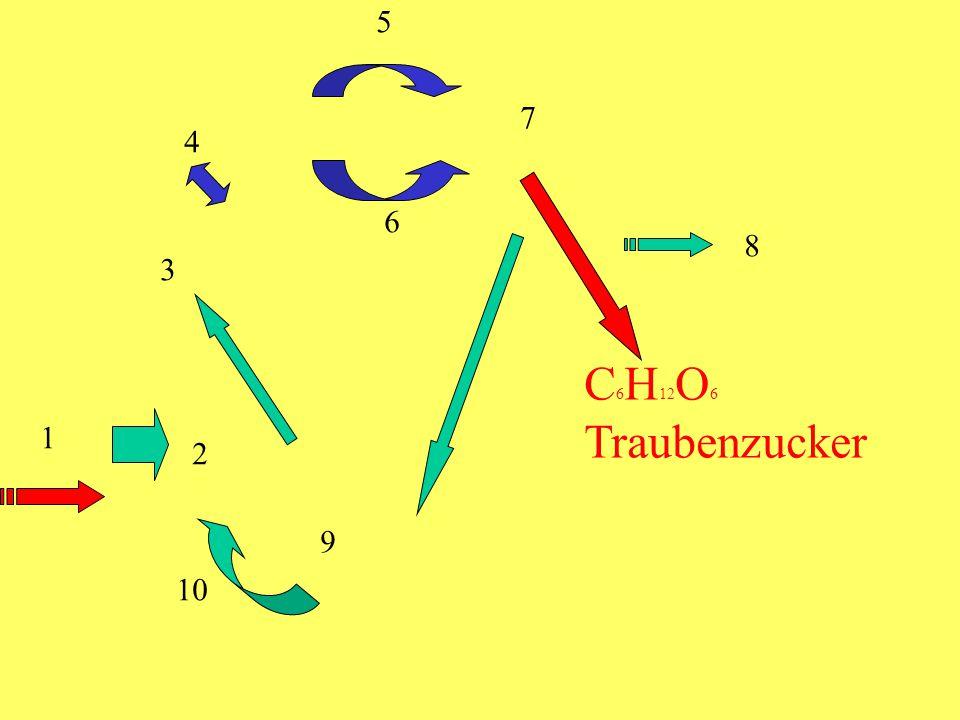 C 6 H 12 O 6 Traubenzucker 1 2 3 4 5 6 7 8 9 10