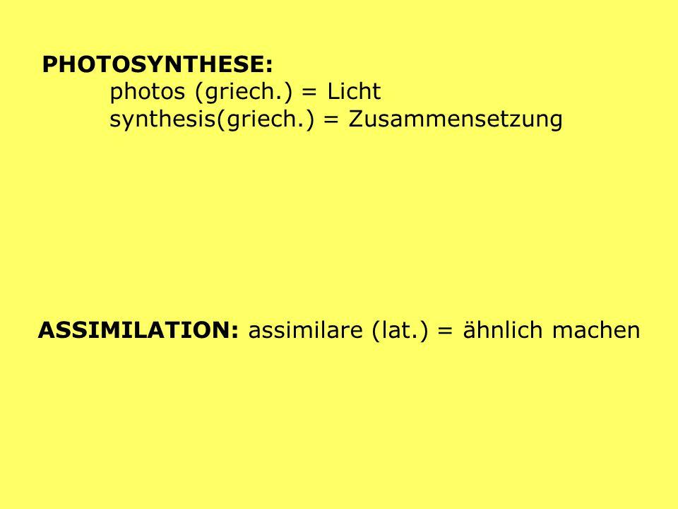 PHOTOSYNTHESE: photos (griech.) = Licht synthesis(griech.) = Zusammensetzung ASSIMILATION: assimilare (lat.) = ähnlich machen
