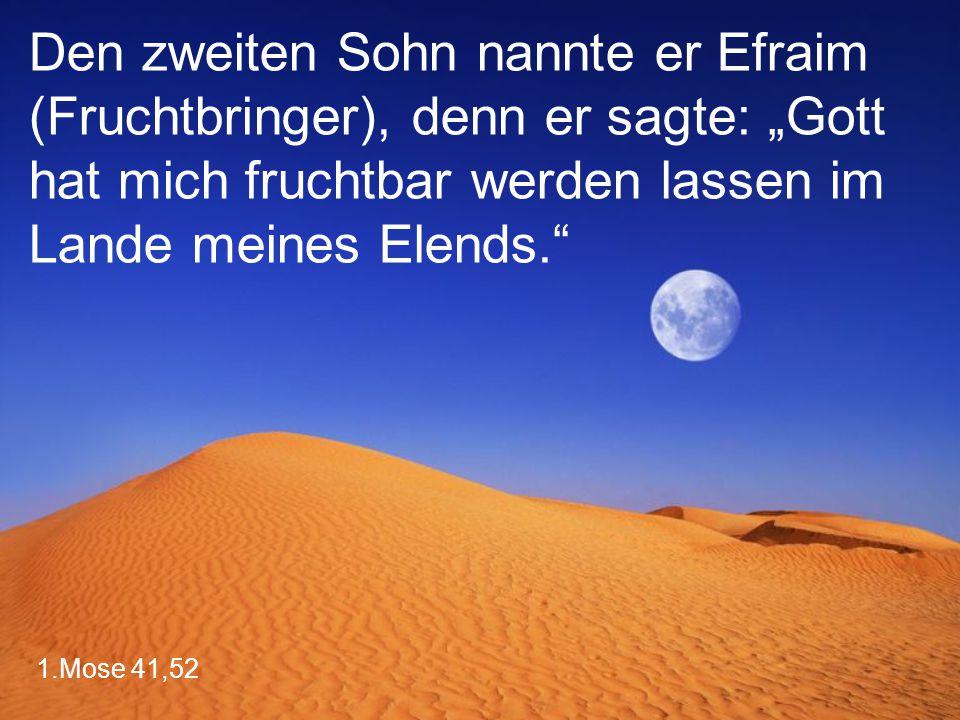 """1.Mose 41,52 Den zweiten Sohn nannte er Efraim (Fruchtbringer), denn er sagte: """"Gott hat mich fruchtbar werden lassen im Lande meines Elends."""""""