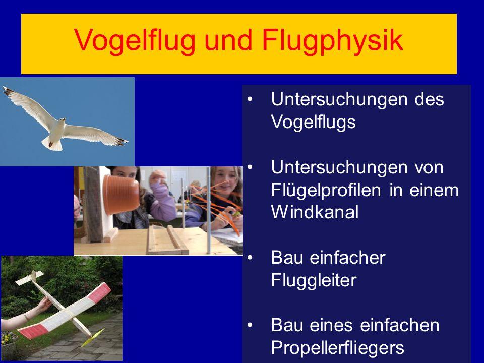 Vogelflug und Flugphysik Untersuchungen des Vogelflugs Untersuchungen von Flügelprofilen in einem Windkanal Bau einfacher Fluggleiter Bau eines einfac