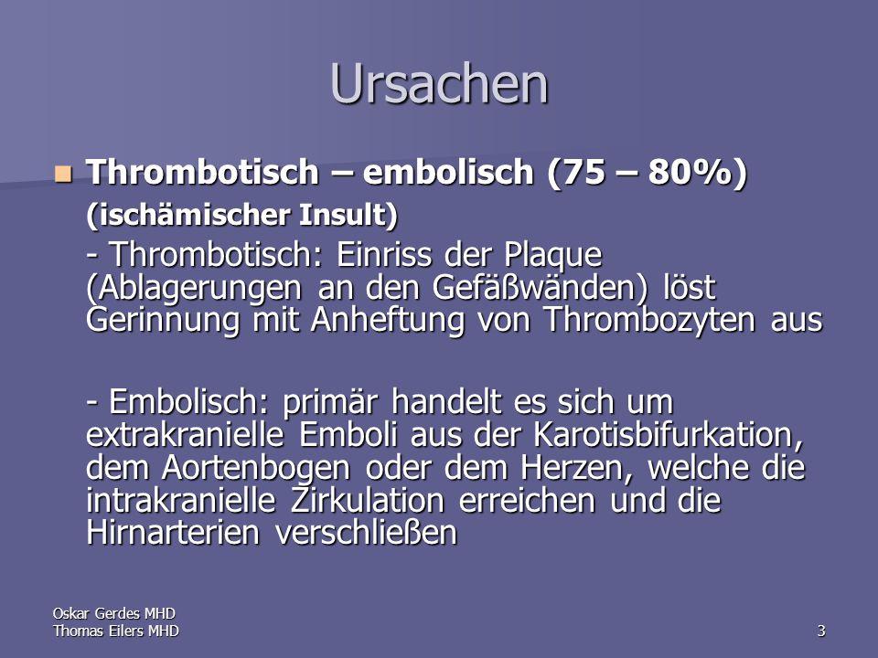 Oskar Gerdes MHD Thomas Eilers MHD4 thrombotische Ablagerung embolischer Verschluß
