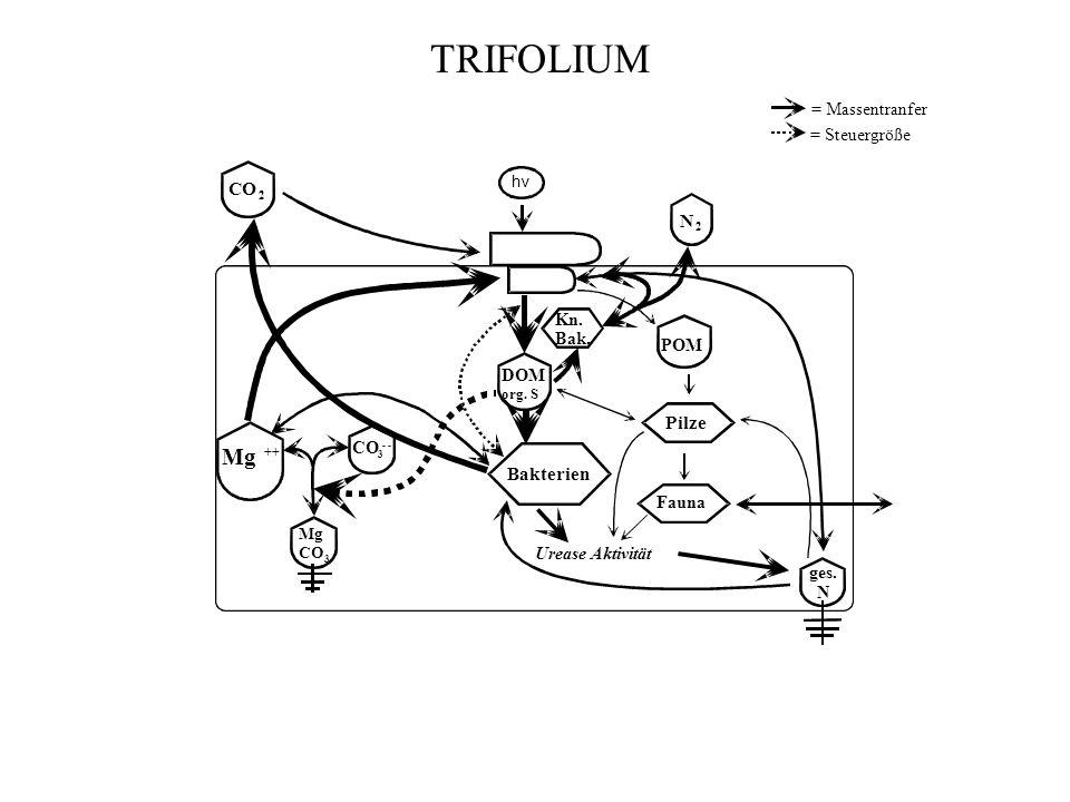 TRIFOLIUM = Massentranfer = Steuergröße