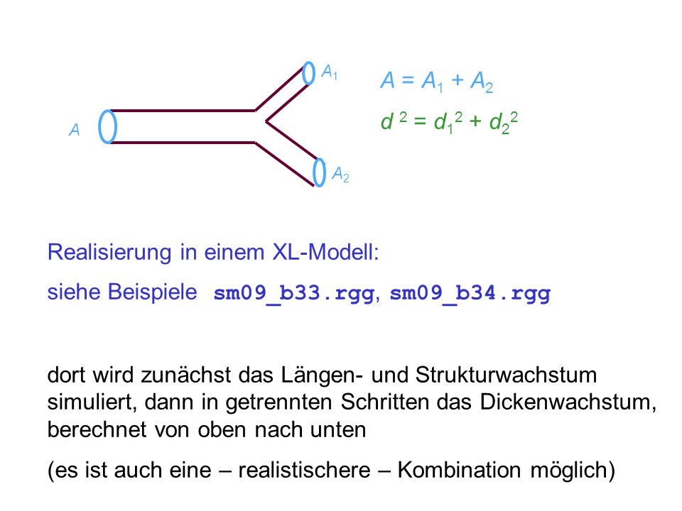 A = A 1 + A 2 d 2 = d 1 2 + d 2 2 A A1A1 A2A2 Realisierung in einem XL-Modell: siehe Beispiele sm09_b33.rgg, sm09_b34.rgg dort wird zunächst das Längen- und Strukturwachstum simuliert, dann in getrennten Schritten das Dickenwachstum, berechnet von oben nach unten (es ist auch eine – realistischere – Kombination möglich)