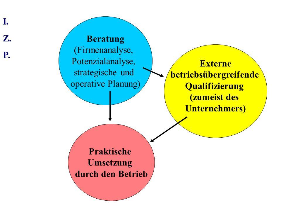 I.Z. P. Konsequenzen: Die Beratungs- und Qualifizierungslücke wächst.