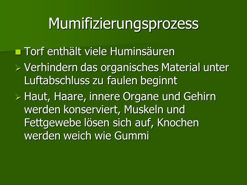 Mumifizierungsprozess Torf enthält viele Huminsäuren Torf enthält viele Huminsäuren  Verhindern das organisches Material unter Luftabschluss zu faule