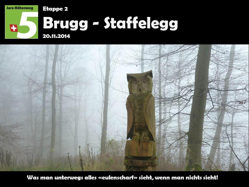 Etappe 2 Brugg - Staffelegg 20.11.2014 Was man unterwegs alles «eulenscharf» sieht, wenn man nichts sieht!