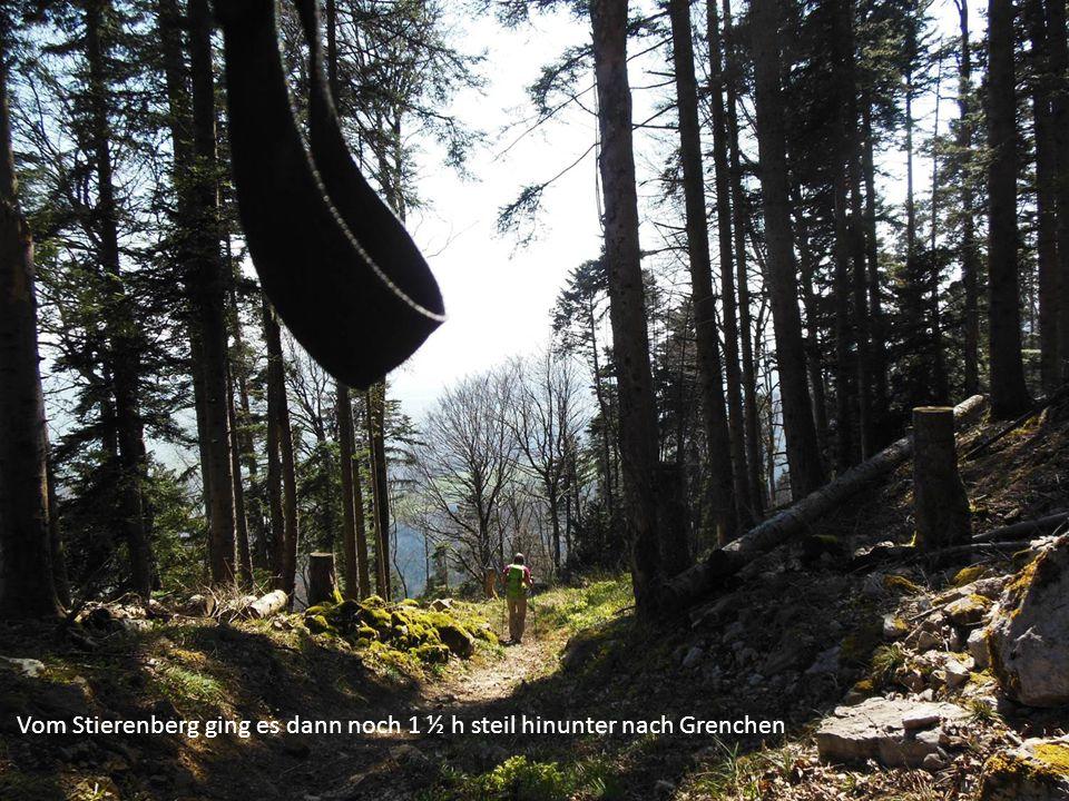 Vom Stierenberg ging es dann noch 1 ½ h steil hinunter nach Grenchen