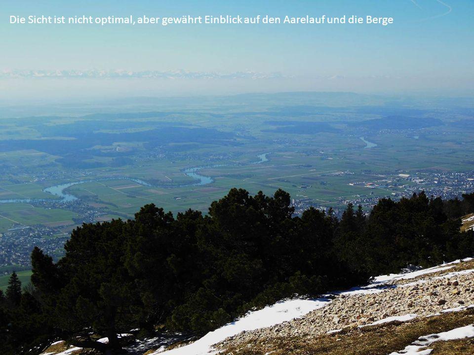 Die Sicht ist nicht optimal, aber gewährt Einblick auf den Aarelauf und die Berge