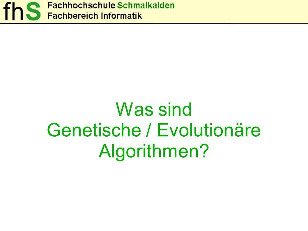 Was sind Genetische / Evolutionäre Algorithmen