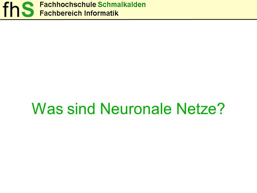 Was sind Neuronale Netze