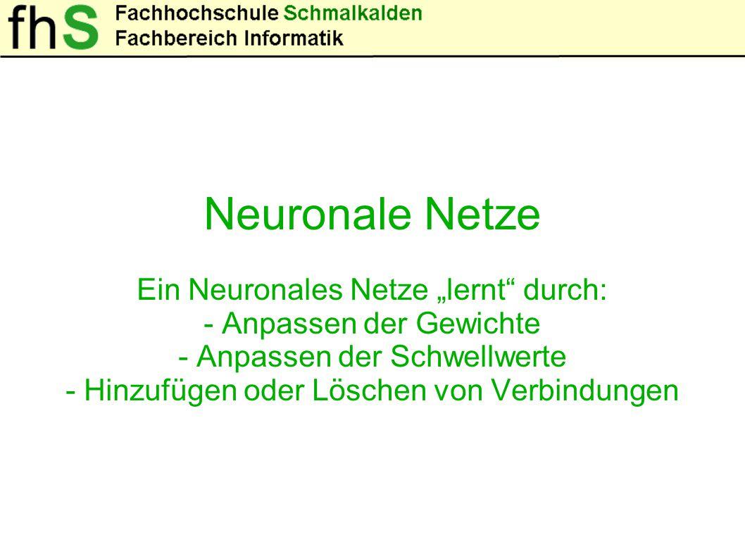 Neuronale Netze - Ungewöhnliche Lösungen - Abspeichern von Erfahrungen
