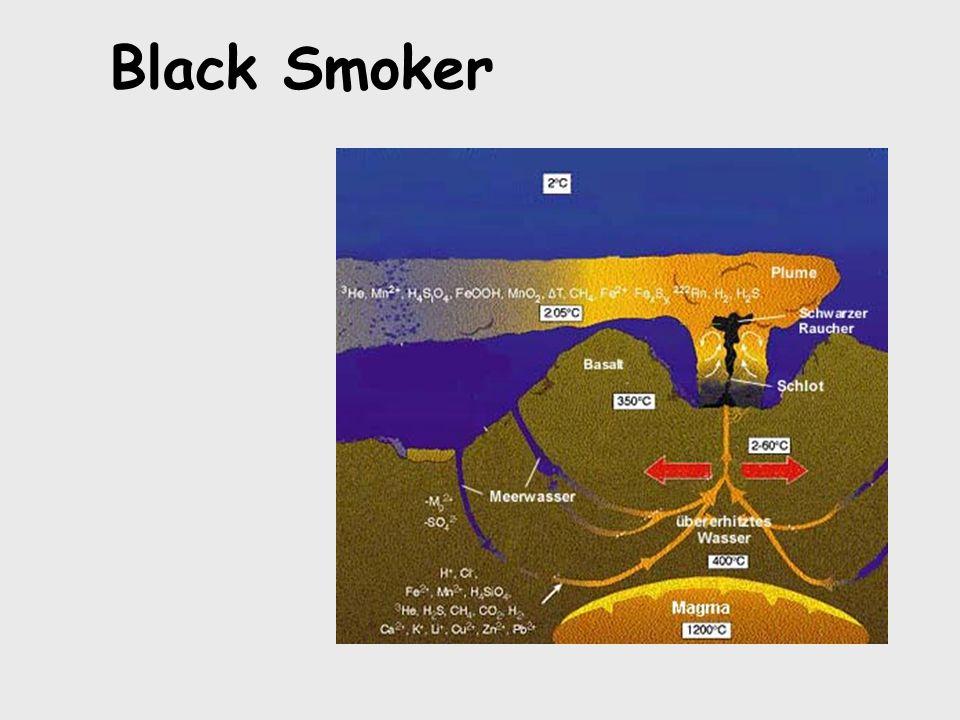 Black Smoker