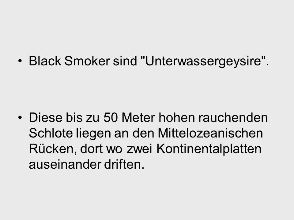 Black Smoker sind