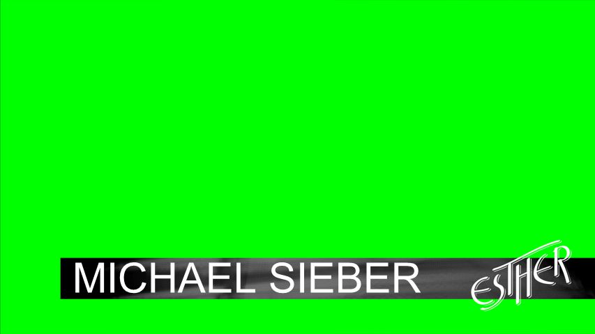 Background MICHAEL SIEBER