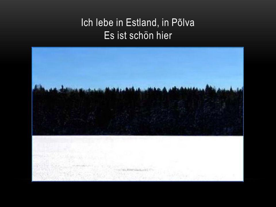 Ich lebe in Estland, in Põlva Es ist schön hier