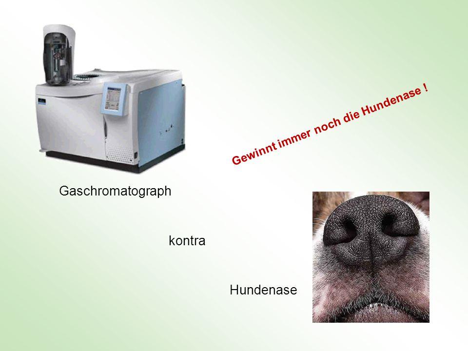 Chemosensoren in den inneren Organen des Menschen Chemosensoren der Leber, die den Glukosespiegel registrieren Chemosensoren im Glomus caroticum und im Glomus aorticum, die einen Sauerstoffmangel (Hypoxie) registrieren.