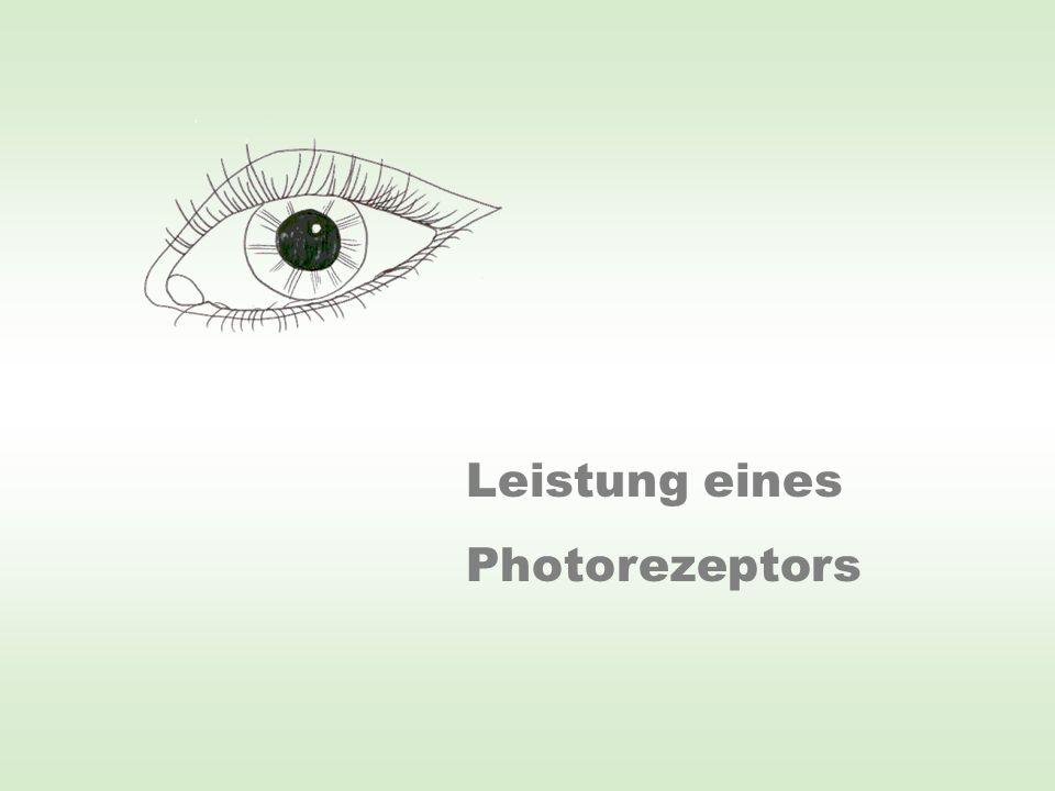 100 W = 100 J/s n ≈ 60 Photonen /s Pupille: A = 0,5 cm 2 n 0 = 6·10 18 Photonen /s Energie eines Photons: Plancksches Wirkungsquantum Lichtwellenlänge Lichtgeschwindigkeit Annahme: Nur 2% der von der Glühlampe ausgesendeten Photonen liegen im maximalen Empfindlichkeitsbereich des Auges (um 550 nm).