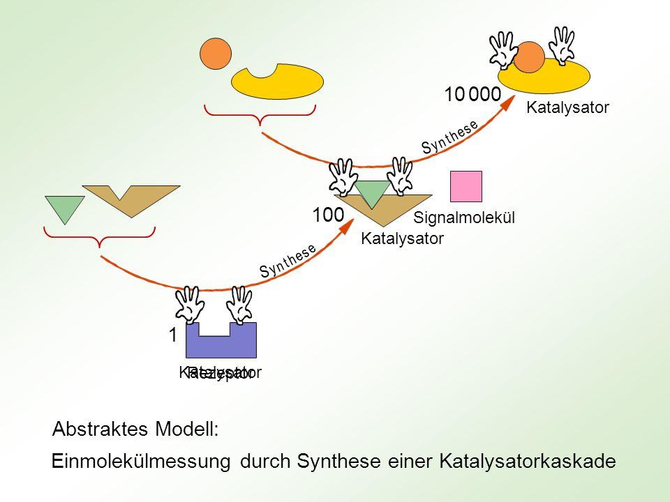 Rezeptor Signalmolekül 100 10 000 1 Enzym 1 Enzym 2 * Enzym 2 Enzym 3 Enzym 3 * k u t i e v r A i n g k u t i e v r A i n g Einmolekülmessung durch Aktivierung einer Enzymkaskade Abstraktes Modell: Könnte z.