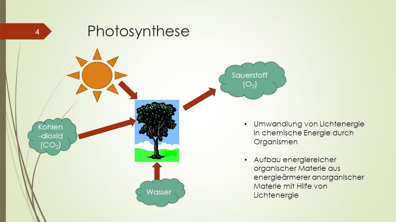 Photosynthese 4 Kohlen -dioxid (CO 2 ) Wasser Sauerstoff (O 2 ) Umwandlung von Lichtenergie in chemische Energie durch Organismen Aufbau energiereiche