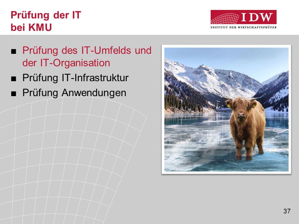 37 Prüfung der IT bei KMU ■Prüfung des IT-Umfelds und der IT-Organisation ■Prüfung IT-Infrastruktur ■Prüfung Anwendungen Begrüßung
