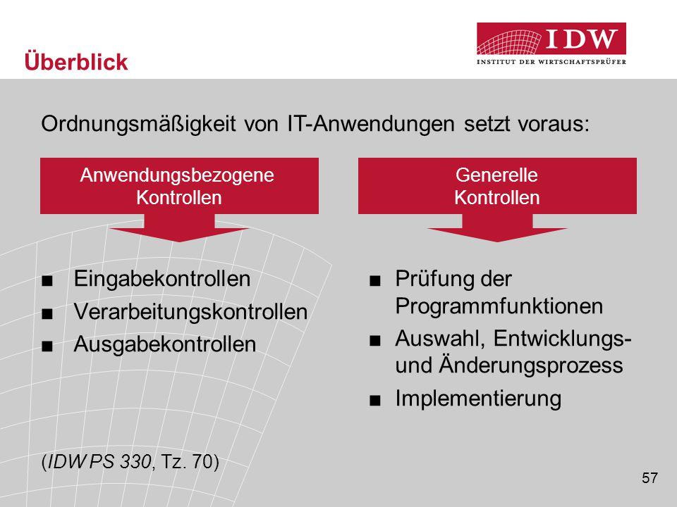 57 Überblick ■Prüfung der Programmfunktionen ■Auswahl, Entwicklungs- und Änderungsprozess ■Implementierung ■ Eingabekontrollen ■ Verarbeitungskontroll