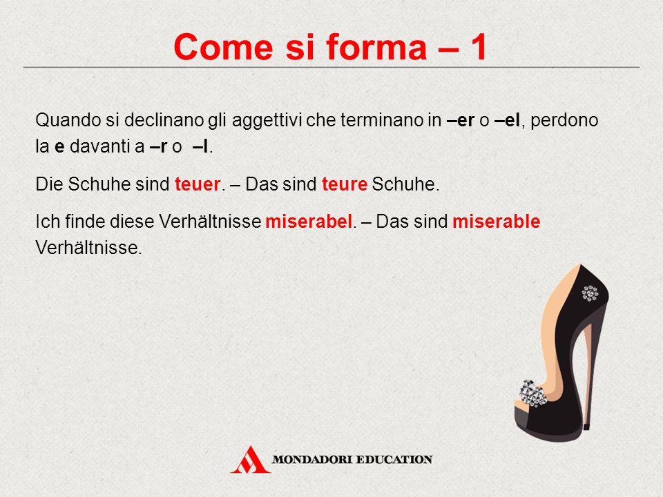 Come si forma – 2a Alcuni aggettivi che terminano in –e o in –a, restano invariati se usati come attributi.
